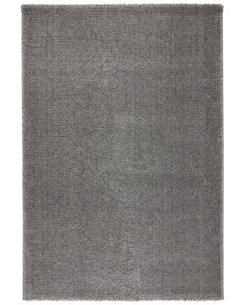 Möbelix Tkaný Koberec Rubin 1, 80/150cm, Sv.sivá