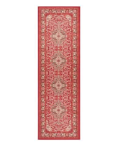 Svetločervený koberec Nouristan Skazar Isfahan, 80 x 250 cm