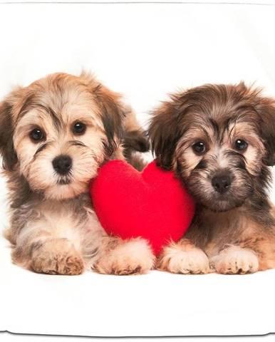 Obliečka na vankúš pes serce 40x40 biela