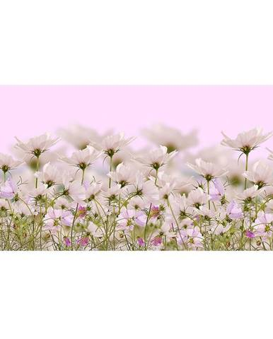 Dekor sklenený Biele kvety 1 30/60