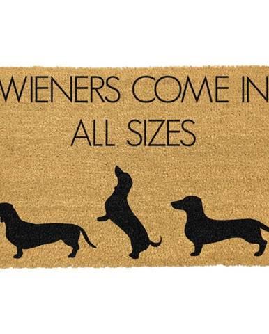 Rohožka z prírodného kokosového vlákna Artsy Doormats Weiners Come In All Sizes, 40 x 60 cm