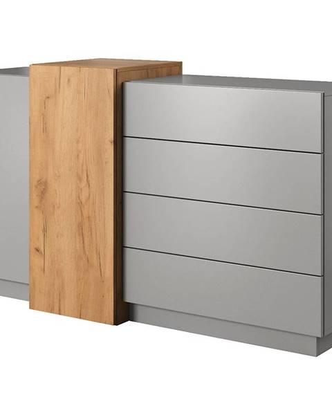 MERKURY MARKET Komoda 2D4S 3D šedá platinum/dub craft zlatý