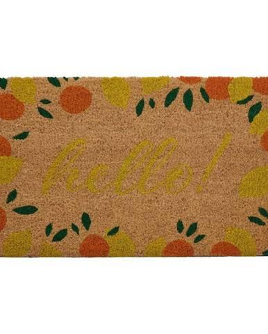 Rohožka z prírodného kokosového vlákna Premier Housewares La Dolce Frutta, 40 x 60 cm