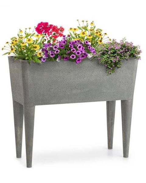 Blumfeldt Blumfeldt Mammutgrow, vysoký záhon, 76 x 65 x 37 cm, UV ochrana, ochrana voči mrazu, sivý