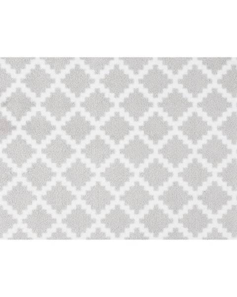 Hanse Home Svetlosivá rohožka Zala Living Elegance, 50×70 cm
