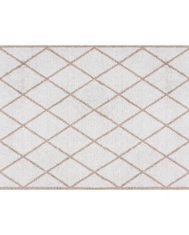 Hnedá rohožka Zala Living Scale, 50×70 cm