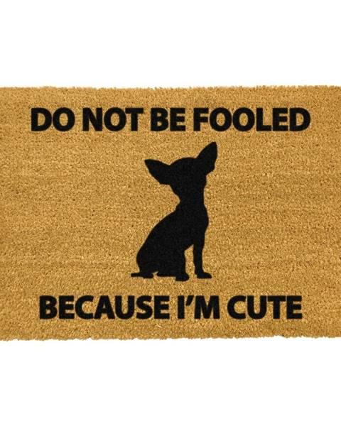 Artsy Doormats Rohožka z prírodného kokosového vlákna Artsy Doormats Chihuahua, 40 x 60 cm